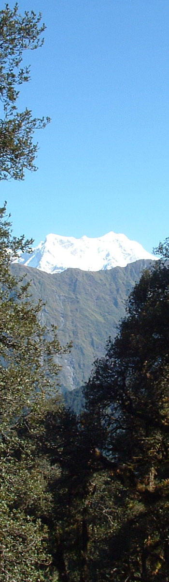 Chaukhamba as we climb to Tungnath